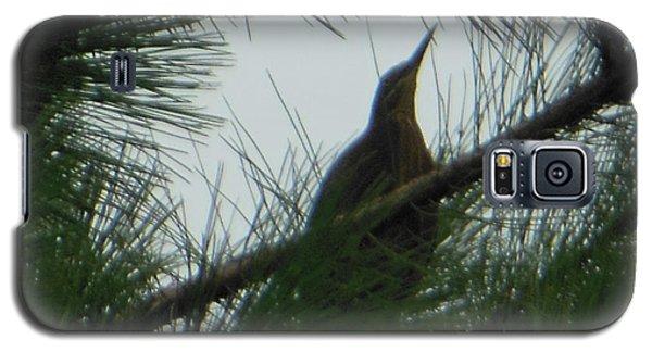 Galaxy S5 Case featuring the photograph American Bitten Bird by Rockin Docks Deluxephotos