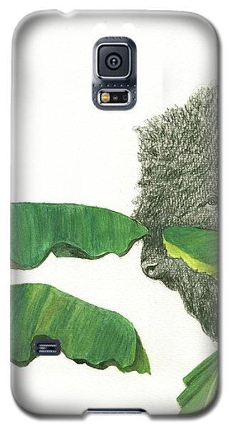 Banana Galaxy S5 Case - American Buffalo 1 by Juan Bosco
