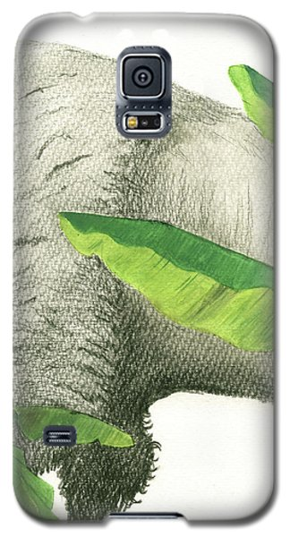 Banana Galaxy S5 Case - American Buffalo 2 by Juan Bosco