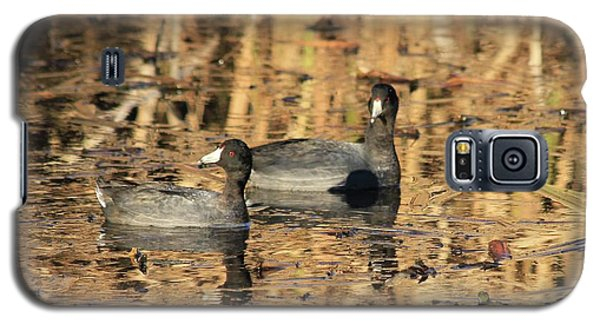 Galaxy S5 Case featuring the photograph American Coots by Jerry Battle
