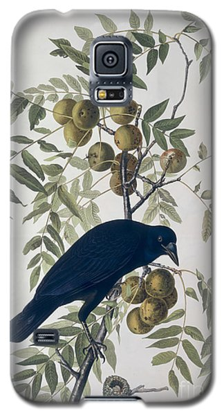 American Crow Galaxy S5 Case