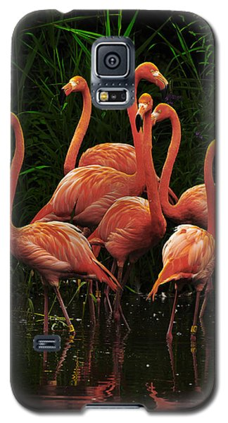 Galaxy S5 Case featuring the photograph American Flamingo by Michael Cummings