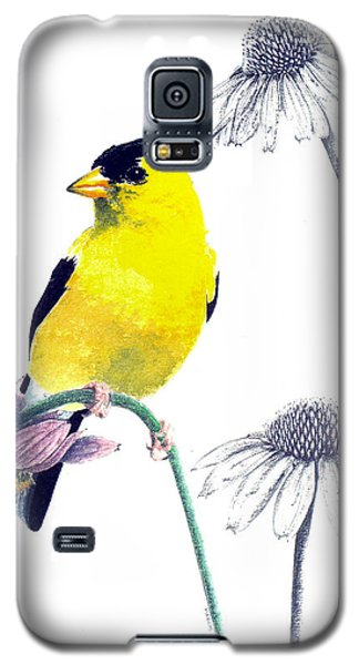 American Goldfinch On Coneflowers Galaxy S5 Case