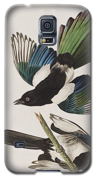 American Magpie Galaxy S5 Case by John James Audubon