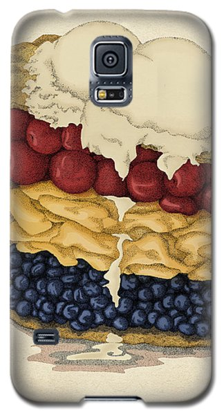 Galaxy S5 Case featuring the drawing American Pie by Meg Shearer