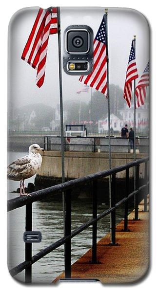 American Seagull Galaxy S5 Case