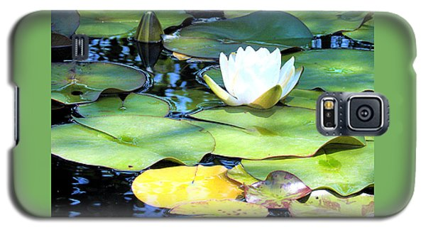 American Water Lilies Four Galaxy S5 Case by J Jaiam