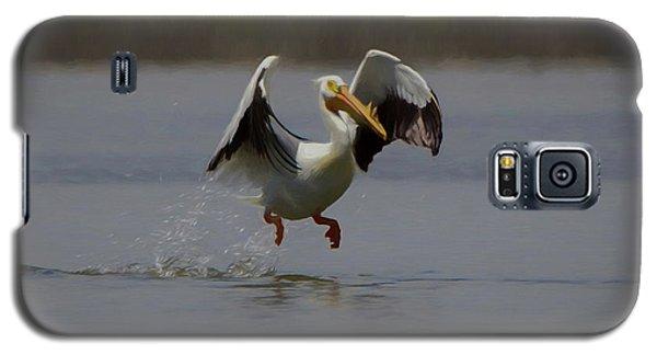 American White Pelican Da 2 Galaxy S5 Case by Ernie Echols