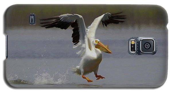 American White Pelican Da 3 Galaxy S5 Case by Ernie Echols
