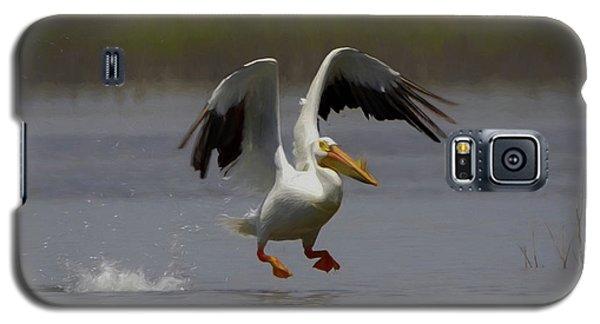 American White Pelican Da 4 Galaxy S5 Case by Ernie Echols