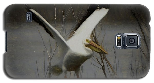 American White Pelican Da Square Galaxy S5 Case by Ernie Echols