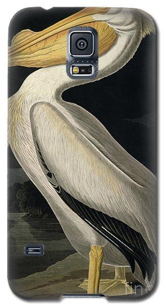 Audubon Galaxy S5 Case - American White Pelican by John James Audubon