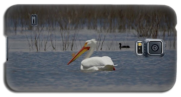 American White Pelican Searching Da Galaxy S5 Case by Ernie Echols