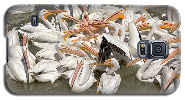 American White Pelicans Galaxy S5 Case by Eunice Gibb