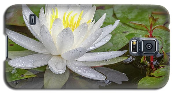 American White Water Lily Galaxy S5 Case