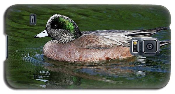 American Wigeon Anas Americana Duck Galaxy S5 Case