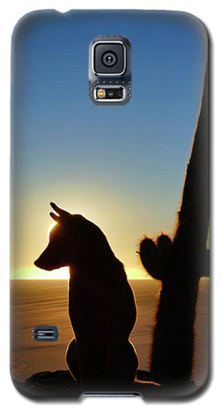 Galaxy S5 Case featuring the photograph Amigo by Skip Hunt