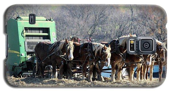 Amish Haymaker In Lancaster County, Pennsylvania Galaxy S5 Case