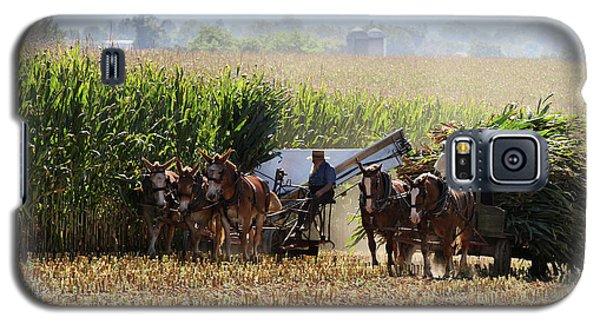 Amish Men Harvesting Corn Galaxy S5 Case