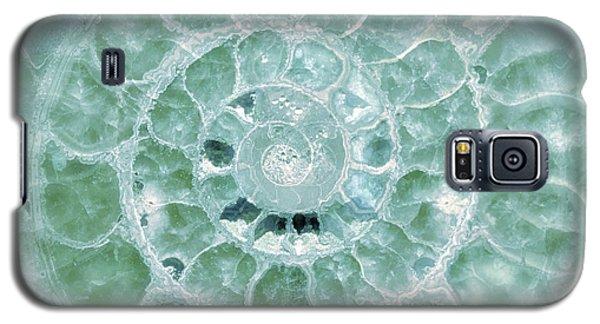 Ammonite Emerald Green Galaxy S5 Case