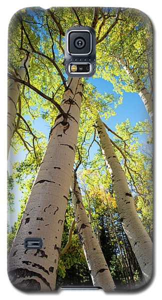 Galaxy S5 Case featuring the photograph Aspen Dance by Dana Sohr