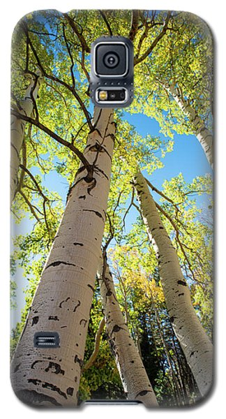 Aspen Dance Galaxy S5 Case