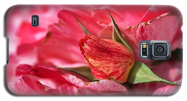 Amongst The Rose Petals Galaxy S5 Case