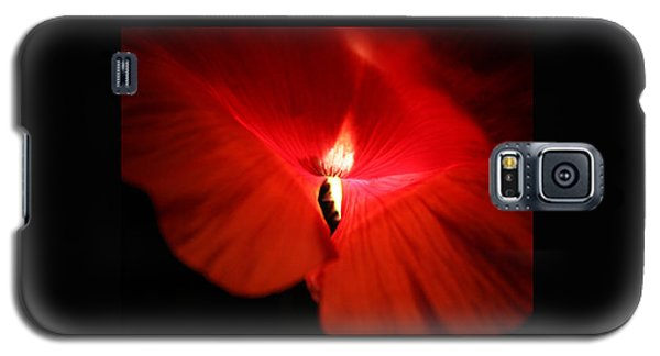 Galaxy S5 Case featuring the photograph Amour Eternel by Martina  Rathgens
