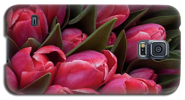 Amsterdam Red Tulips Galaxy S5 Case