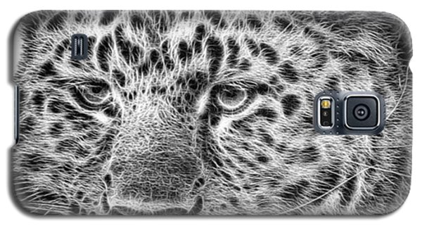 Amur Leopard Galaxy S5 Case by John Edwards