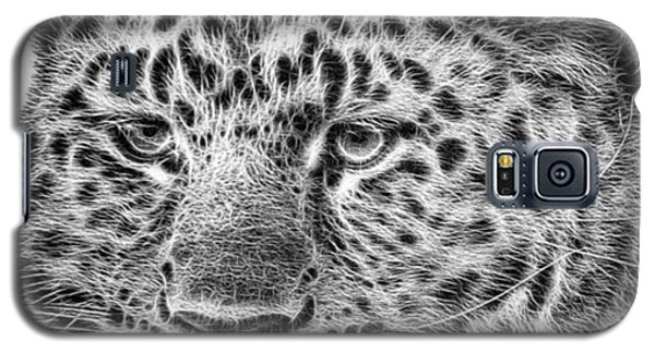 Galaxy S5 Case - Amur Leopard by John Edwards