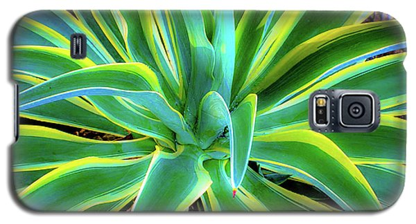 An Agave In Color  Galaxy S5 Case