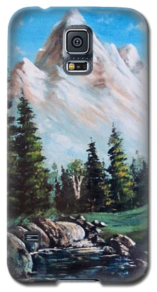 An Alpine Stream Galaxy S5 Case