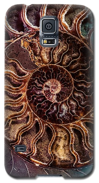 An Ancient Shell Galaxy S5 Case