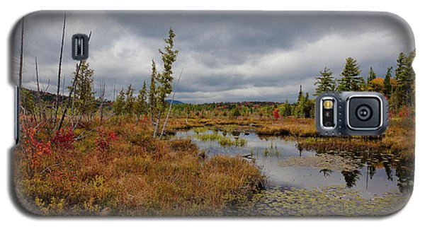 Galaxy S5 Case featuring the photograph An Autumn Afternoon On Raquette Lake by David Patterson