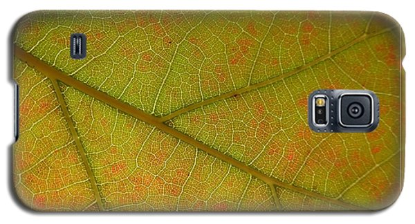 Galaxy S5 Case featuring the photograph An Autumn Leaf by Jean Bernard Roussilhe