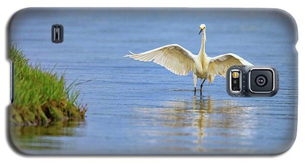 An Egret Spreads Its Wings Galaxy S5 Case by Rick Berk