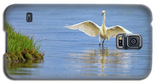 An Egret Spreads Its Wings Galaxy S5 Case