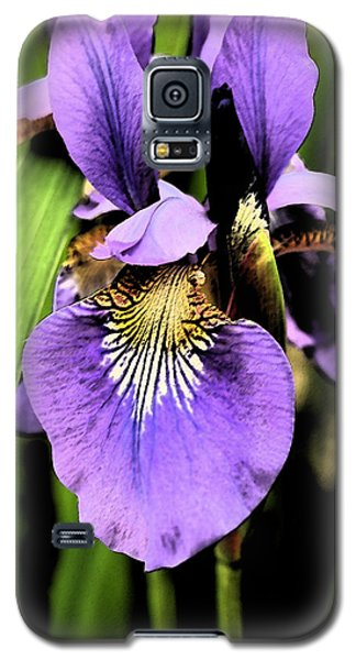 An Iris Portrait - Botanical Galaxy S5 Case by Margie Avellino