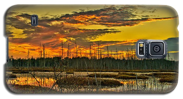 An November Sunset In The Pines Galaxy S5 Case