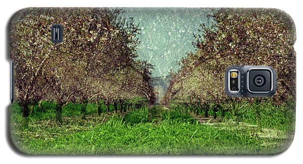 An Orchard In Blossom In The Eila Valley Galaxy S5 Case