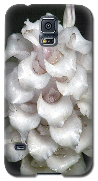 An Unusual Orchid Galaxy S5 Case by Rosalie Scanlon