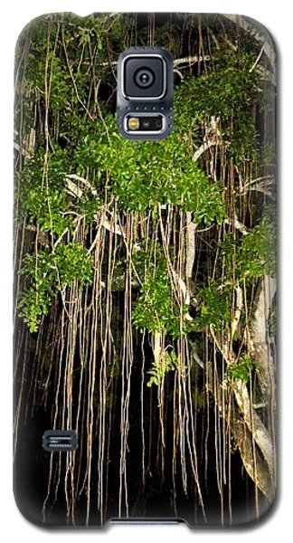 Galaxy S5 Case featuring the photograph An Unusual Tree by Rosalie Scanlon