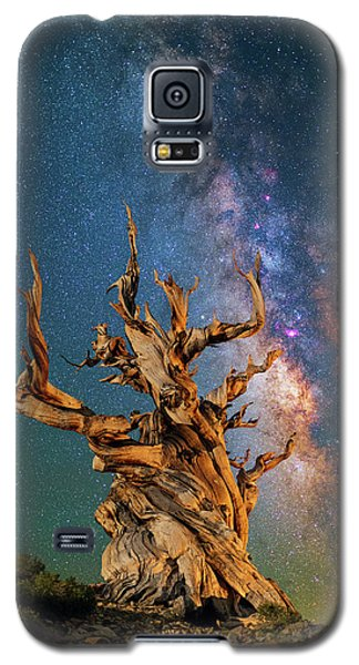 Ancient Beauty Galaxy S5 Case