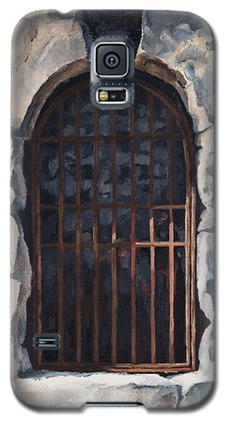 Ancient Door Galaxy S5 Case