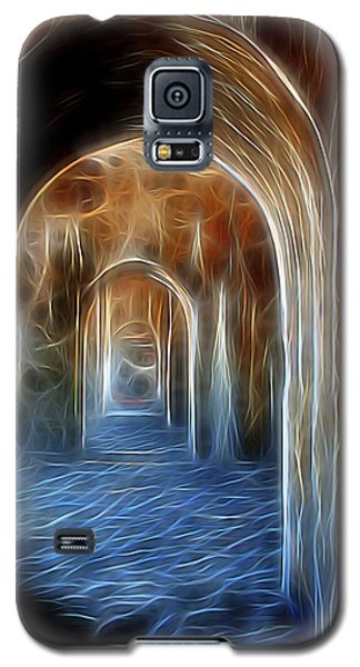 Ancient Doorway 5 Galaxy S5 Case