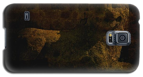 Ancient Lion In Cyprus Galaxy S5 Case by Jim Vance
