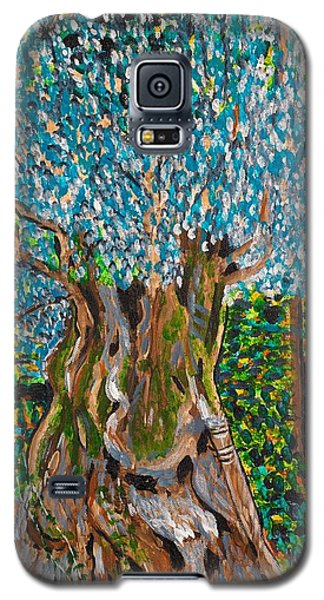 Ancient Olive Tree Galaxy S5 Case by Valerie Ornstein