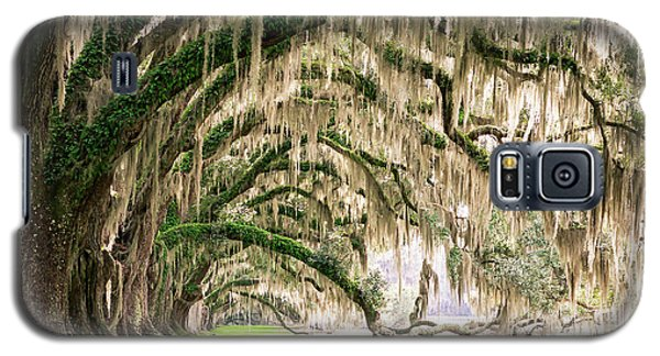 Ancient Southern Oaks Galaxy S5 Case
