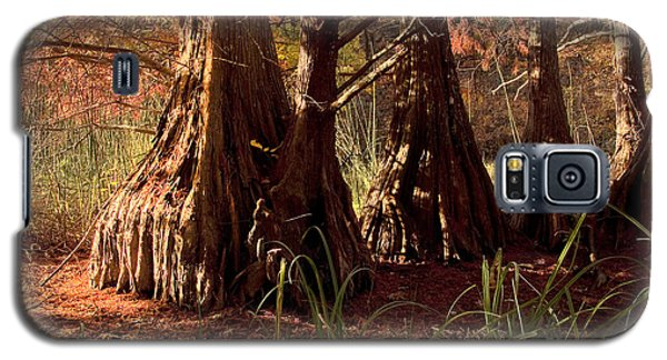Galaxy S5 Case featuring the photograph Ancient Tree At Lake Murray by Tamyra Ayles